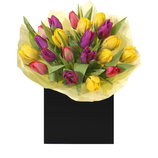 Cheerful Tulips - Flowers Made Easy